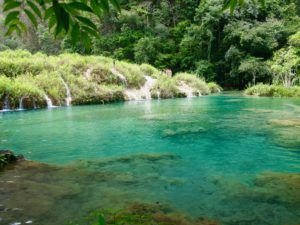 Turquoise pools of Semuc Champey